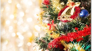クリスマスチキンの簡単レシピは?フライパンで?魚焼きグリルで?