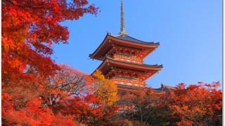 京都の紅葉 混雑は?おすすめスポットはどこ?見頃はいつ?