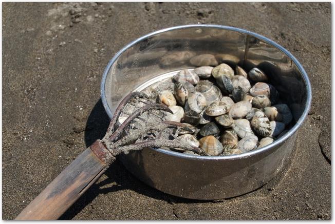 砂浜に置かれた熊手と貝