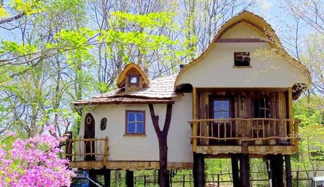 スウィートグラスのツリーハウス